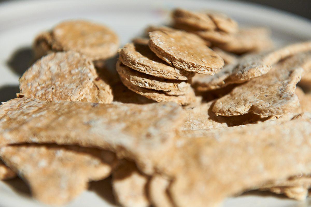 vegetarische-cookies-fuer-den-hund-Foto: Maike Helbig-fuer-Bettina-Bergwelt-www.misterspencer.de