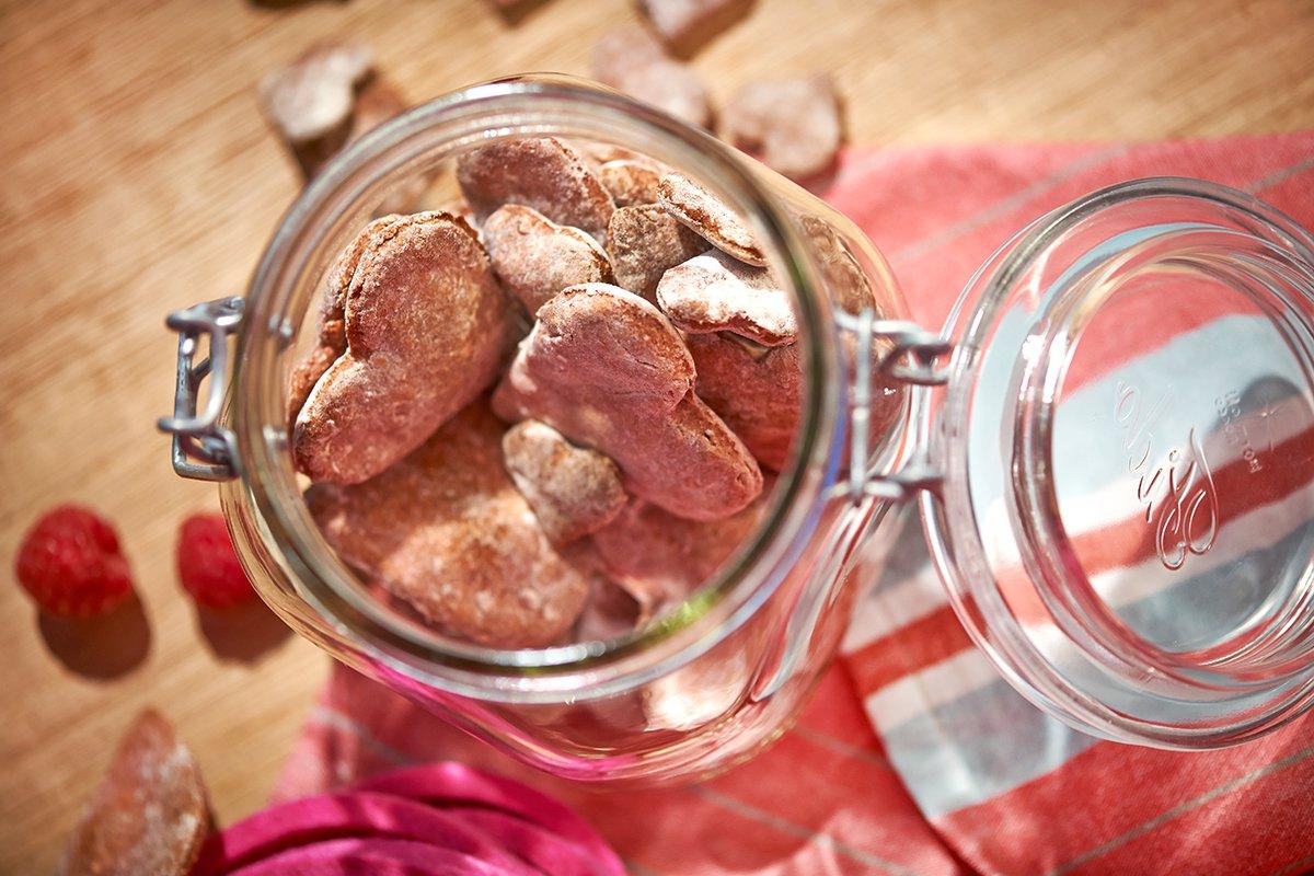 himbeer-kokos-cookies-fuer-den-hund-foto-maike-helbig-fuer-bettina-bergwelt-www.myotherstories.de