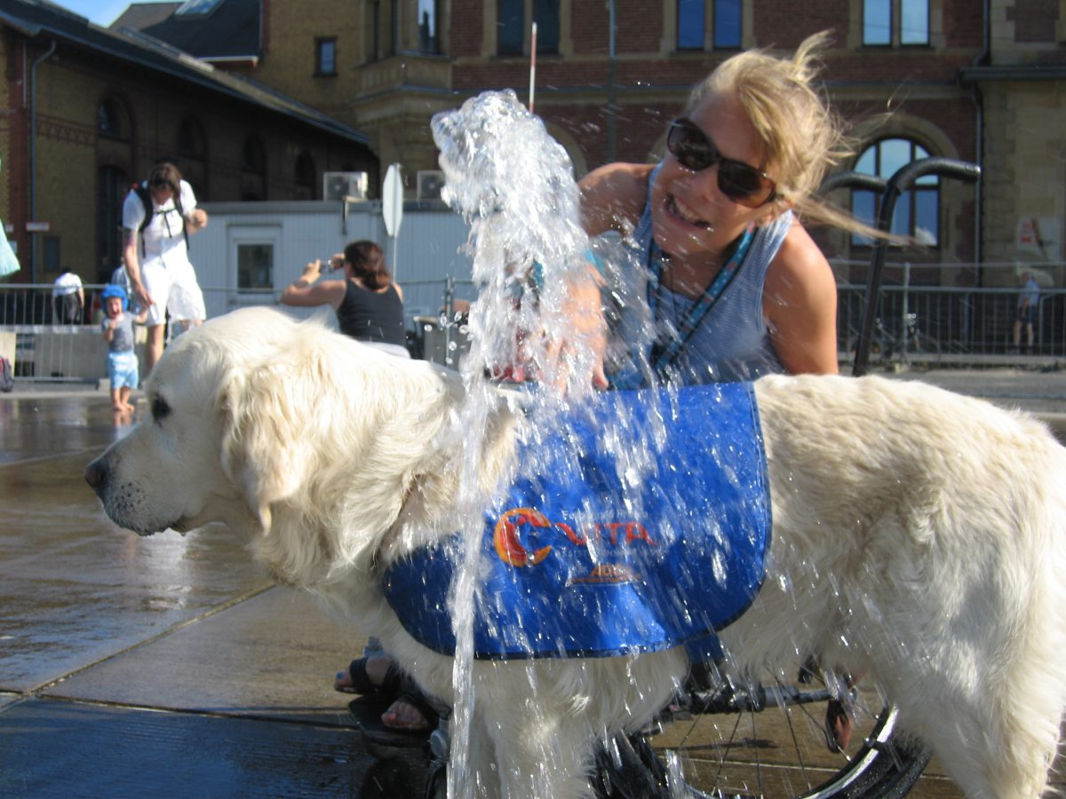 frieda-und-therapiehund-fellow-von vita-assistenzhunde-foto-fuer-www.ciaogianna.de