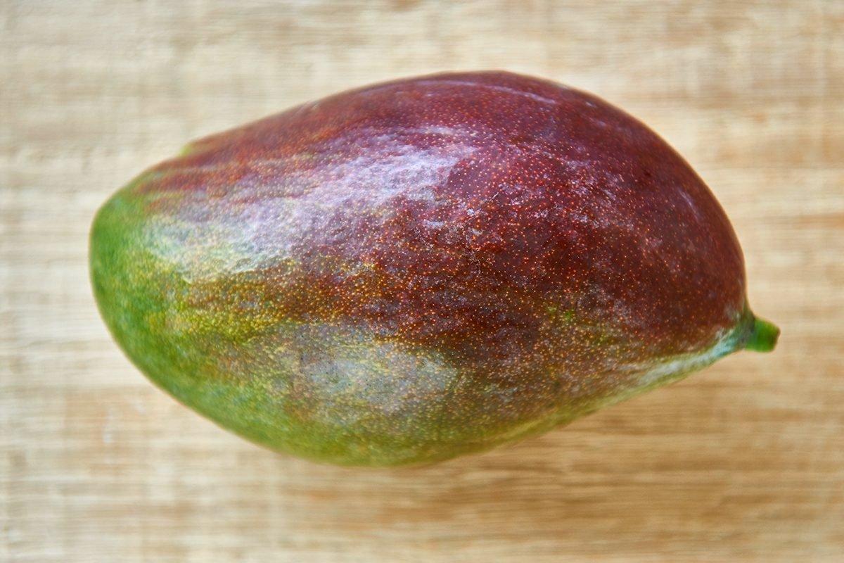 mango-im-hundefutter-foto-maike-helbig-fuer-bettina-bergwelt-www.ciaogianna.de