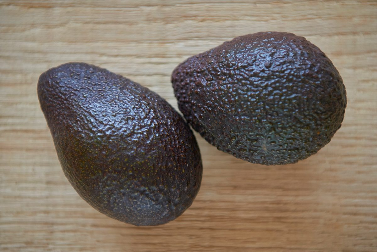 avocados-sind-giftig-fuer-hunde-bloss-nicht-fuettern-foto-maike-helbig-fuer-www.ciaogianna.de