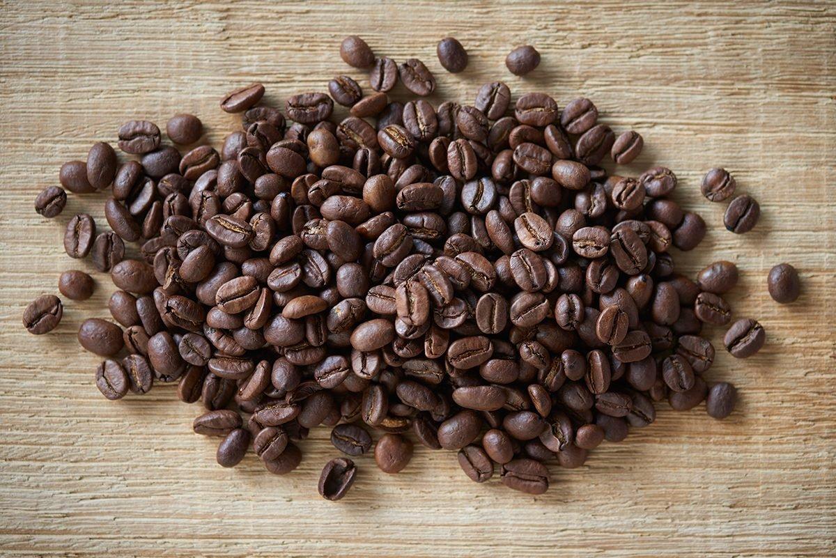 koffein-ist-giftig-fuer-hunde-foto-maike-helbig-fuer-www.ciaogianna.de